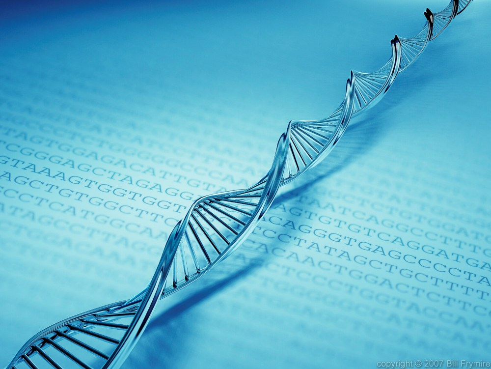 DNA Cryptography