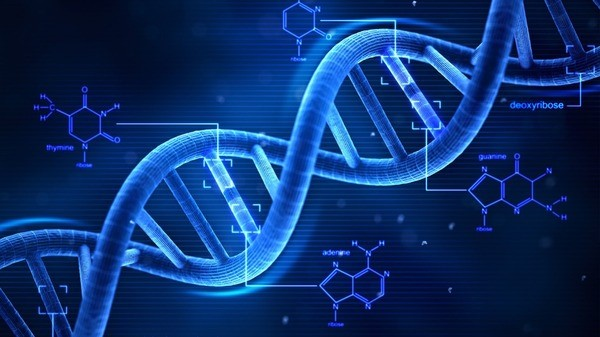 Hacker is targeting DNA sequencer applications from Iranian IP address