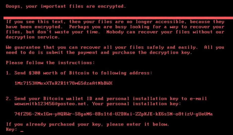 Petwrap Ransomware massive attack – 24 hours later