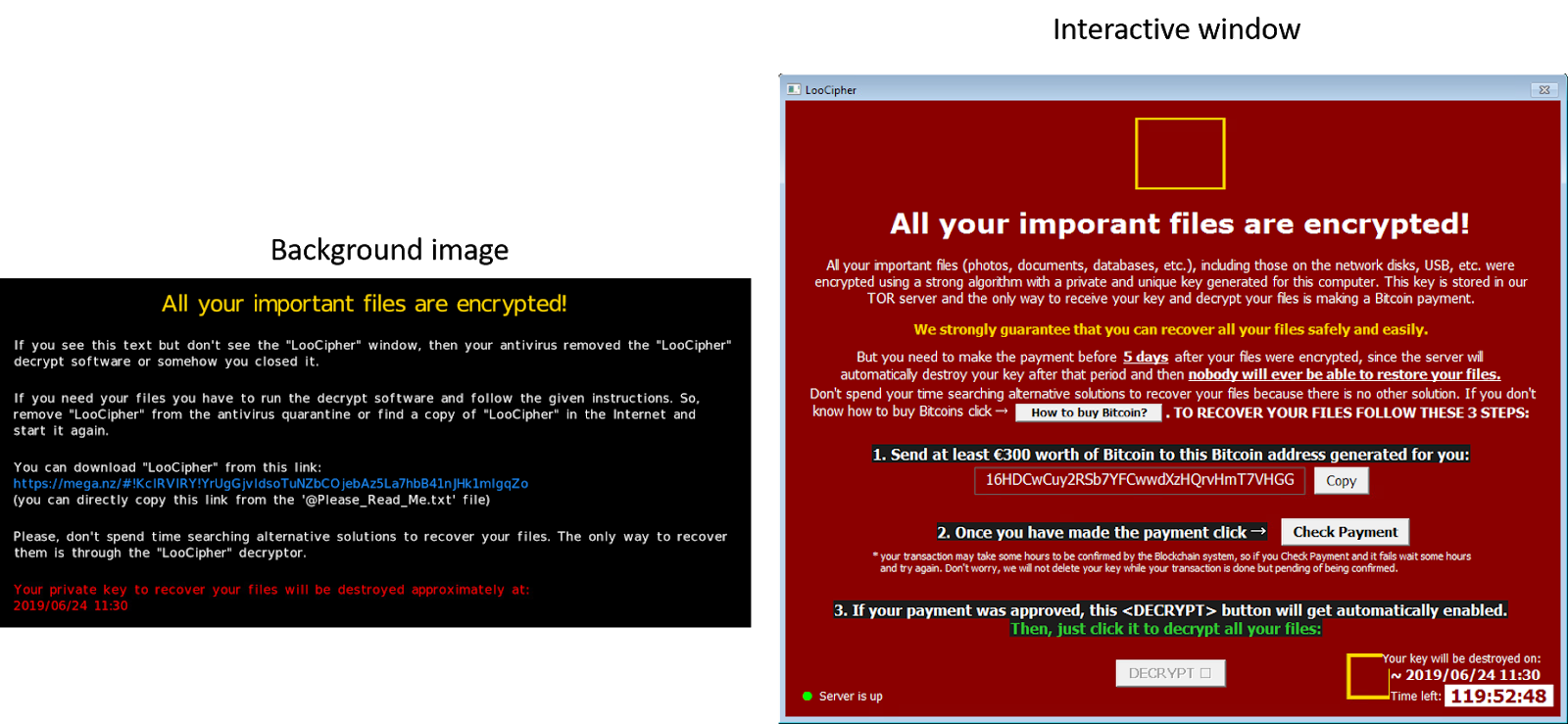 LooCipher: The New Infernal Ransomware